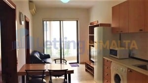 Rent Real Estate Malta Msida